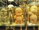 7 viện bảo tàng kỳ quái